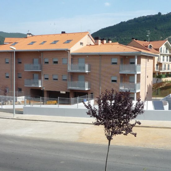 21 Viviendas en Jaca (Huesca)